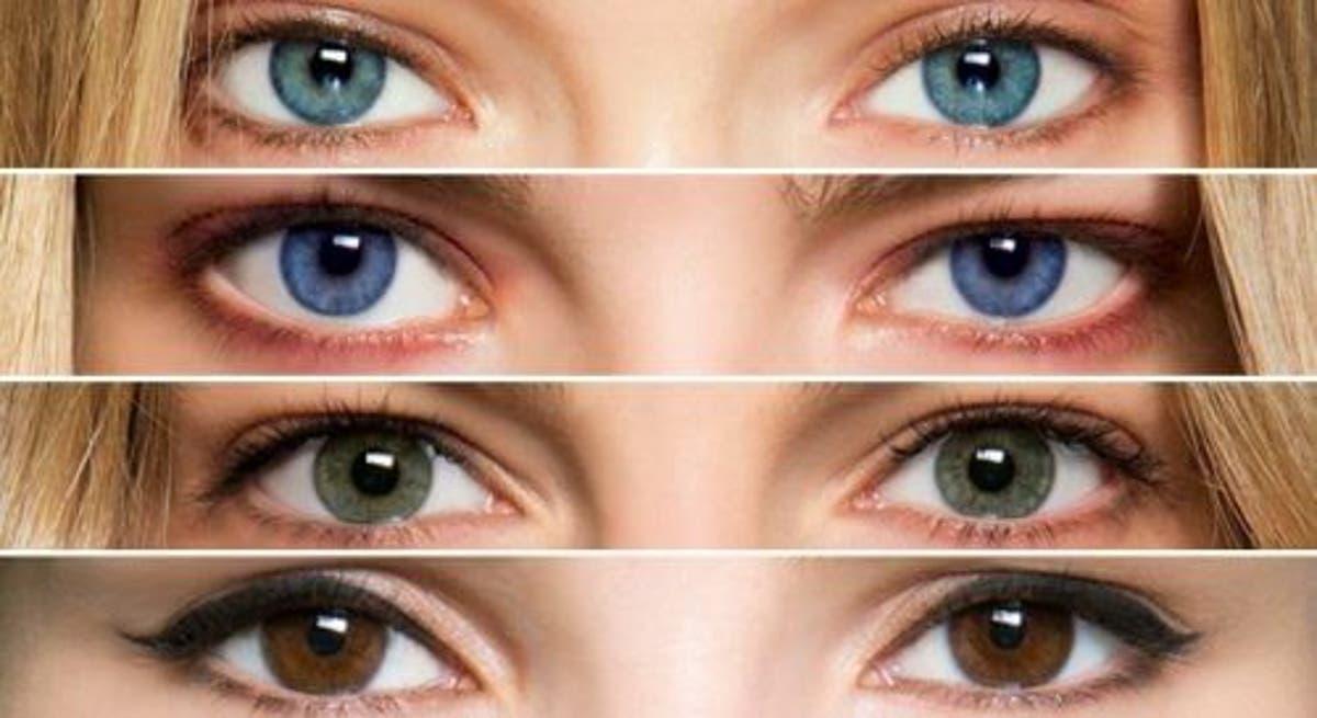 yeux et alimentation